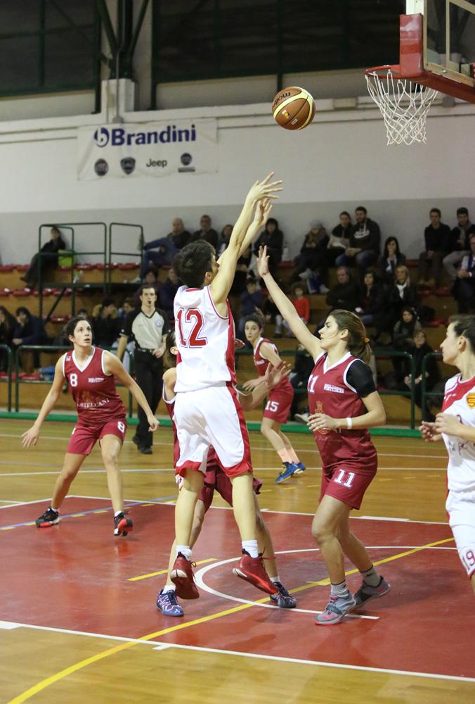 femminile_sieci-pontedera011basket