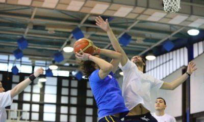 olifi basket